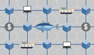 using-blockchain-trace-seafood